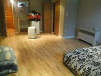 large private basement room for rent