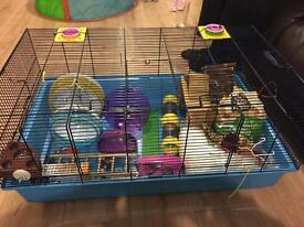 Hamster heaven - large hamster cage plus extras - some new