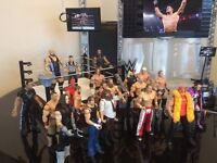 WWE 20 figures. Entrance stage. Ring and accessories