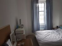 Edinburgh Festival Let. Spacious double bedroom in quiet flat close to city centre.