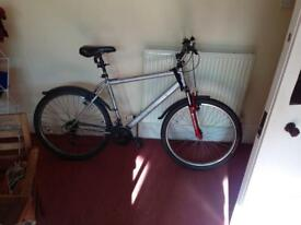 Silver Apollo Adult Mountain Bike