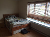 Affordable single room available in central London. Please read the description.