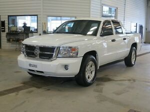 2008 Dodge Dakota SLT
