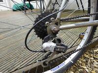 "Mens 21"" mountain bike"