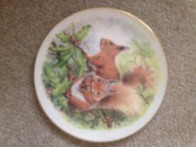 Fine bone china plate for sale