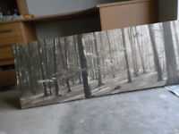 canvas picture of a woodland scene length 59 inches by20 inches