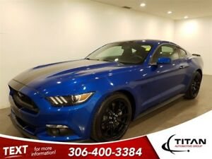 2017 Ford Mustang Fastback GT|5.0L|Leather|Roush exhaust|Sunroof