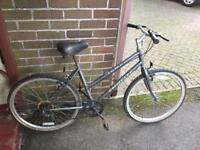 Ladies Mountain Bike (Delivery Available)