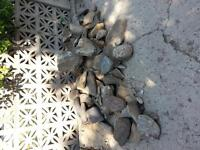 Rocks to give away