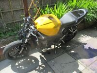 Triumph TT 600 project spares or repairs