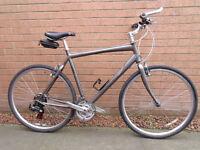 Giant hybrid bike ( XL frame )