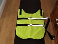 FLUORESCENT WATERPROOF DOG COAT