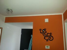 Professional painter & decorator in Glasgow. Quality work and cheap prices