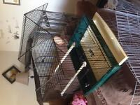 Really cute small bird cage (love birds, budgies)