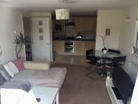 1 bedroom to rent in a modern flat on coombe road