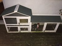 2 x rabbits and big hutch for sale £25