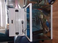 two fish tank full set up