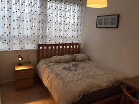 Tremendous room for couples near Canary Wharf Station