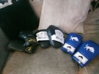 Sparring pads and 2 pairs of gloves