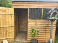 7' x 5' pent shed - cheap shed perfect for Guinea Pigs and Rabbits