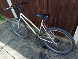 Licoln Mountain Bike