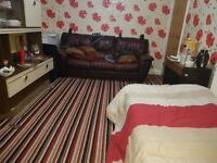 Stunning Large stunning Double Room available for immediate move