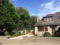 Central 2/3 bedroom house for rent