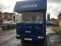 Horse Lorry 7.5 Tonne - Low Mileage