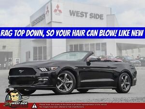 2016 Ford Mustang V6–Accident Free–SiriusXM–Convertible–3.7L V6–