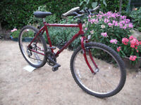 Raleigh Avalanche Mountain Bike - 26 Inch Wheels - 19 Inch Frame - 15 Gears - Drinks Bottle Cage