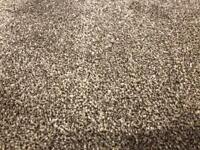 New large saxony carpet offcuts