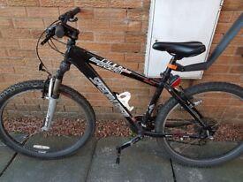 Very light weight bike