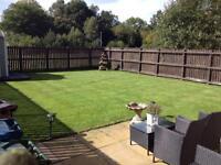 Garden services grass cutting ,gardener