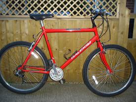 raleigh firefly big frame,fast road bike
