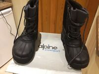 Alpine snow boots with liners.