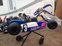 Tony kart 2009 125cc