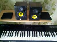 Roland D5 with free active speakers