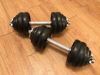 Body Power 30Kg Spinlock Dumbbell Set