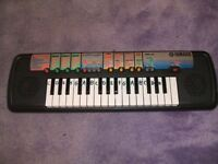 junior organ