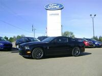 2011 Ford Shelby SVT TRACKPACK