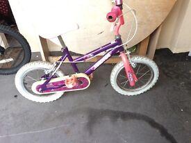 Purple wild manga bike in great condition