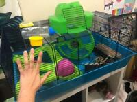 Hamster Cage for Sale (open to offers)