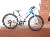 Cube 240 Kids Race Series Mountain Bike