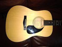 Fender Acoustic Guitar DG-5NAT