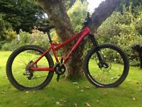 Specialized P All Mountain 2007 Bike - Good condition