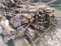 (ALL YOU CAN TAKE) Firewood fire wood logs kindle and trunks.