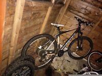 Carrara mounton bike