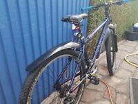 Kona mountain bike hardtail