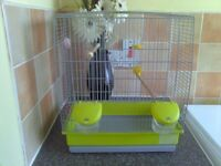 canary or budgie cage newish 20 pound no offers