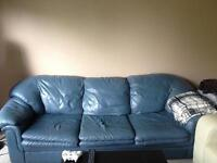 Seeking Friendly Home for Awesome Couch